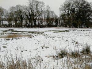 Wiltshire wonderland