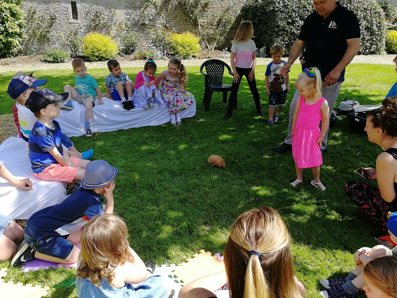 Food, Birthday Party, Children, chocolate, animals
