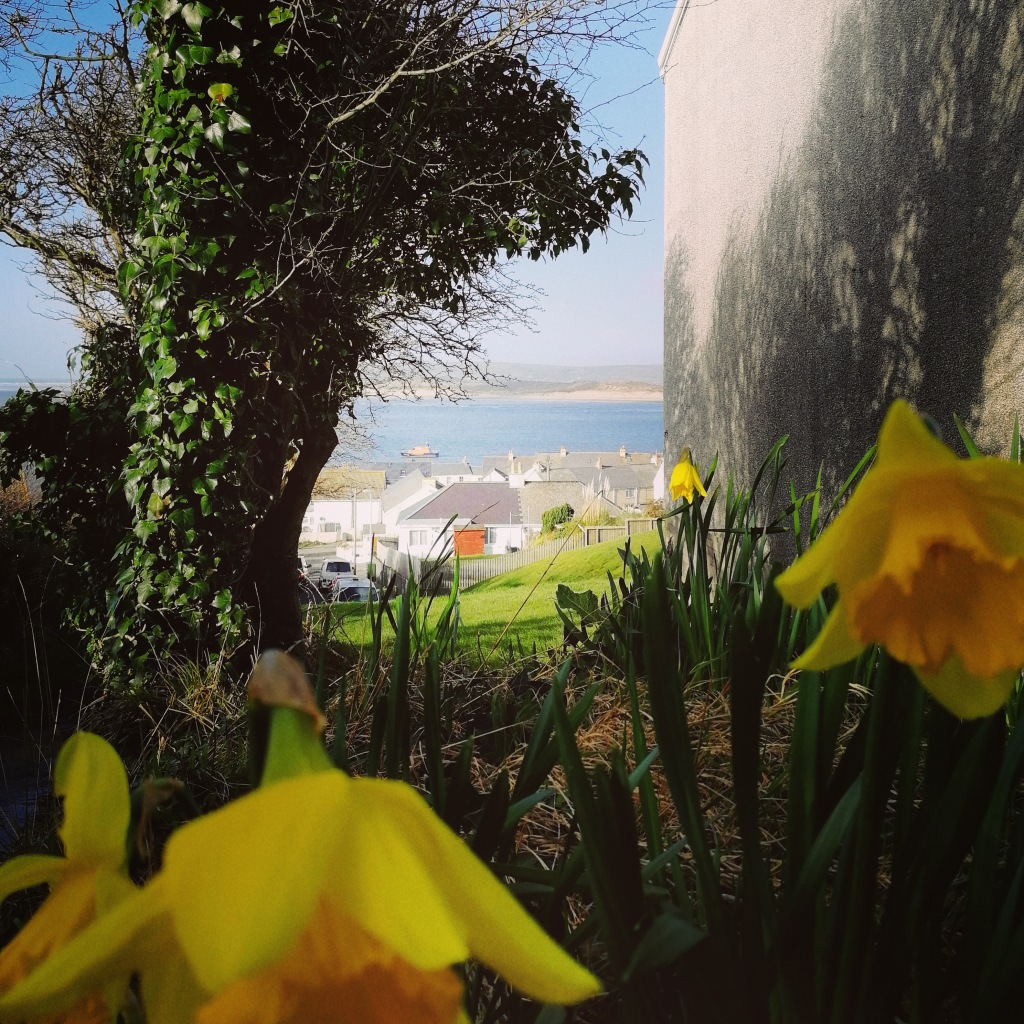 Appledore, Devon, Spring, Flowers, Rivers
